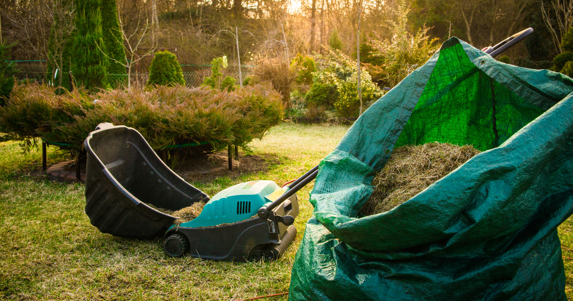 Prepping your yard for spring